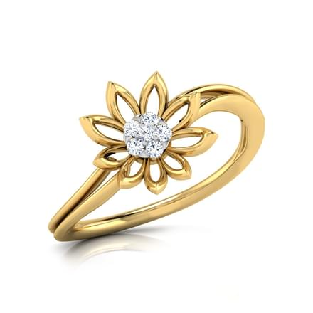 Bloom Cluster Ring